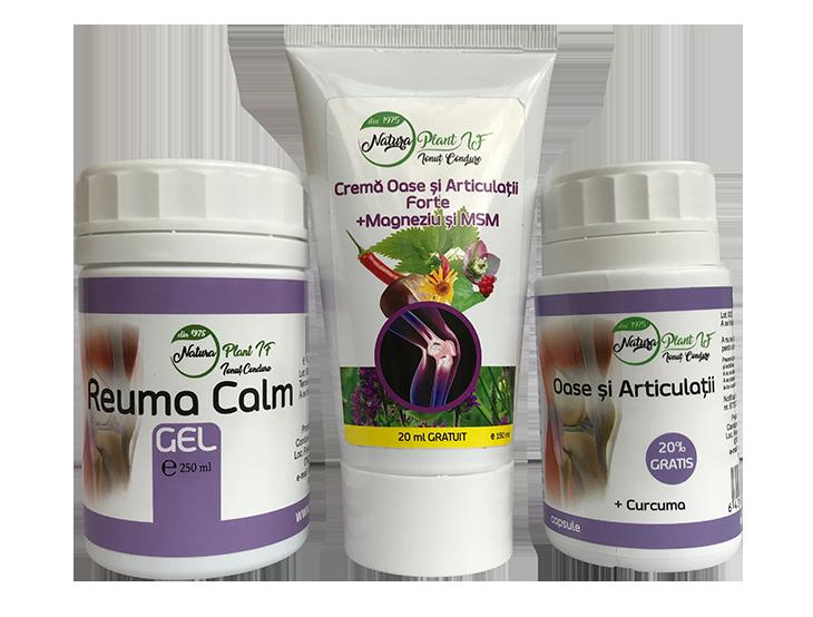 plante medicinale pentru dureri osoase și articulare